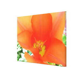 Canvas - Wrapped - Orange -Red Tulip l