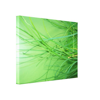 CanvasArt-GrassOnGreen.© Roseanne Pears 2012. Canvas Print