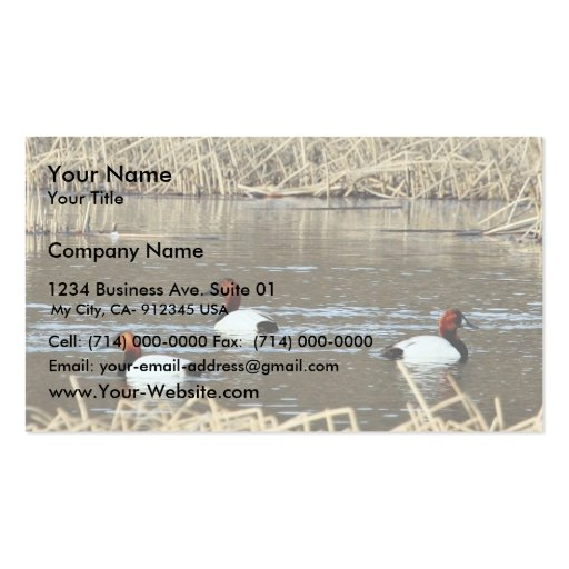 Canvasback drakes business card