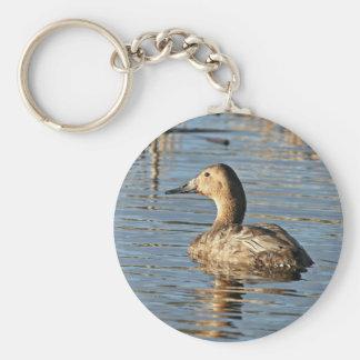 Canvasback hen basic round button keychain