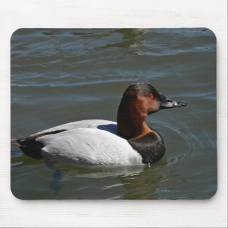 Canvasback Mouse Pad