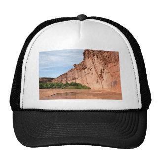 Canyon de Chelly, Arizona, USA 6 Trucker Hat