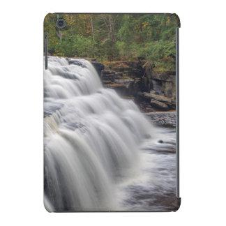 Canyon Falls On The Sturgeon River Near L'Anse iPad Mini Cover