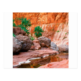 Canyon Hidden Oasis El Cajon Baja Mexico Postcard