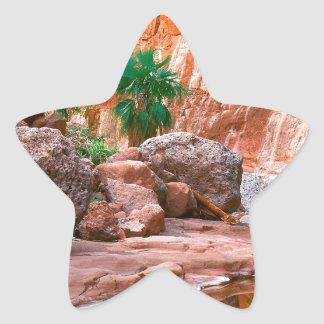 Canyon Hidden Oasis El Cajon Baja Mexico Star Sticker