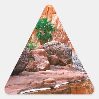 Canyon Hidden Oasis El Cajon Baja Mexico Triangle Sticker
