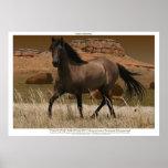 CANYON MUSTANG Horse Conservation Art Print