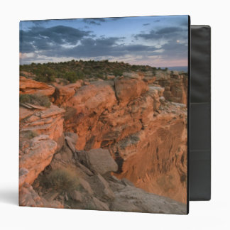 Canyon overlook in the Island in the sky Binder