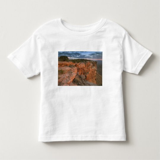Canyon overlook in the Island in the sky Toddler T-shirt