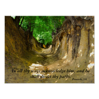 Canyon Photo with Proverbs 3:6 Bible Verse Print