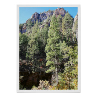 Canyon Pines Poster