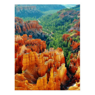 Canyon Post Cards