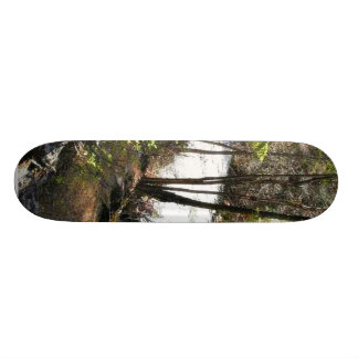 Canyon Stream Trees Kootenai On Hill Skateboard