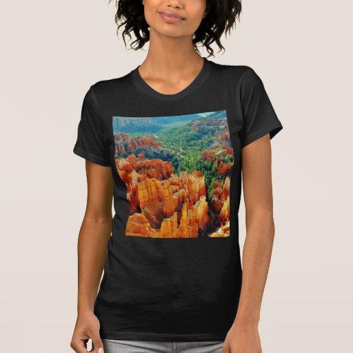 Canyon T Shirts
