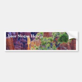 Canyon Tree Bumper Sticker