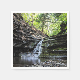 Canyon waterfall disposable napkins