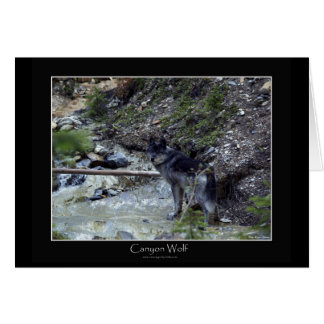 CANYON WOLF Greeting Card or Note Card