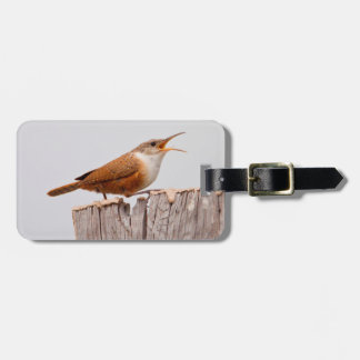 Canyon Wren (Catherpes Mexicanus) Singing Tag For Luggage