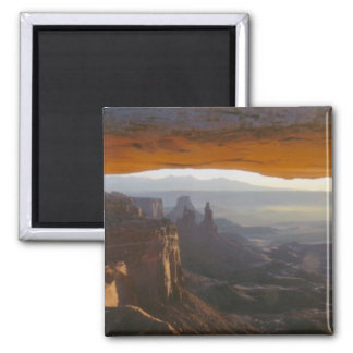 CANYONLANDS NATIONAL PARK, UTAH. USA. View 2 Inch Square Magnet