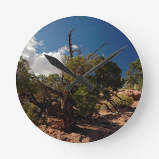 Canyonlands Reloj