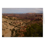 Canyonlands View from Neck Springs Trail Card