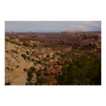 Canyonlands View from Neck Springs Trail Poster