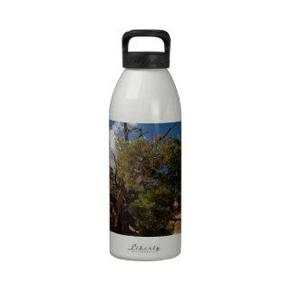 Canyonlands Water Bottles