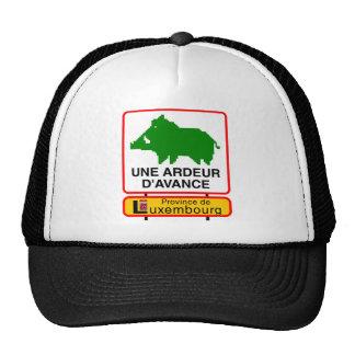 Cap - a HEAT IN ADVANCE - prov. Luxembourg Trucker Hat