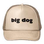 """Cap """"big dog """" trucker hats"""