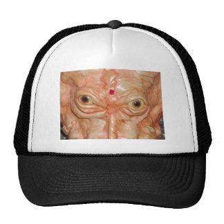 """Cap, """"Brown Demon Eyes"""" Hat"""