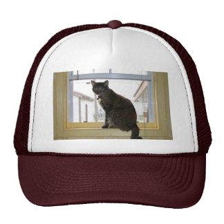 Cap, Calico Cat Trucker Hat