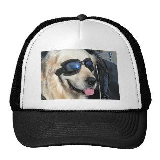 Cap coolly Dog Biker Dog Trucker Hat