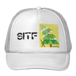 CAP SENDS IN THE FIR TRUCKER HAT