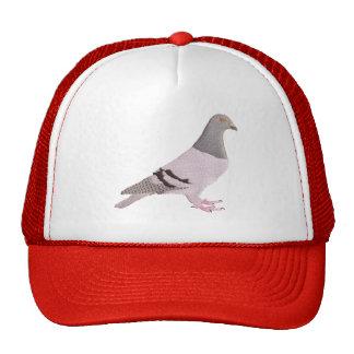 Cap with carrier pigeon sobrerelief trucker hat