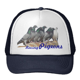 Cap with carrier pigeons on the tile roof trucker hat