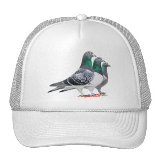 Cap with trio of carrier pigeons trucker hat