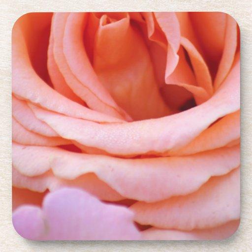 Capas de pétalos rosados posavaso