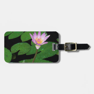 Cape Blue Water Lily (Nymphaea Capensis) Luggage Tag