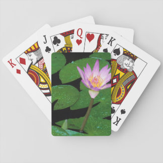Cape Blue Water Lily (Nymphaea Capensis) Playing Cards
