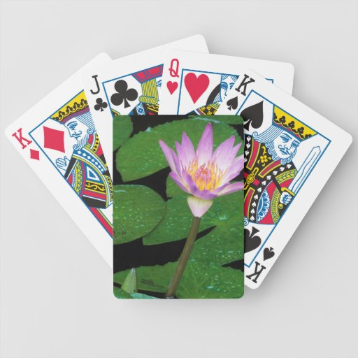 Cape Blue Water Lily (Nymphaea Capensis) Bicycle Card Deck
