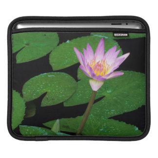 Cape Blue Water Lily (Nymphaea Capensis) Sleeve For iPads