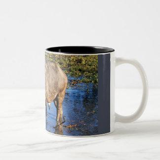 Cape Buffalo by Rowood © Coffee Mugs