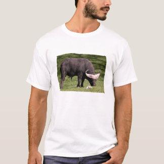 Cape Buffalo Eating T-Shirt