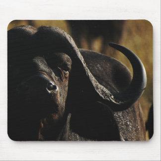 Cape Buffalo exclusive designer mousemats Mouse Pad