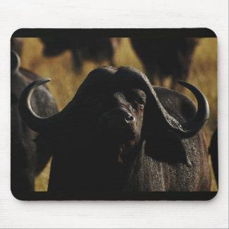 Cape Buffalo exclusive designer mousemats Mousepads