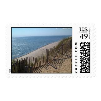Cape Cod Beach Dunes Postage Stamp