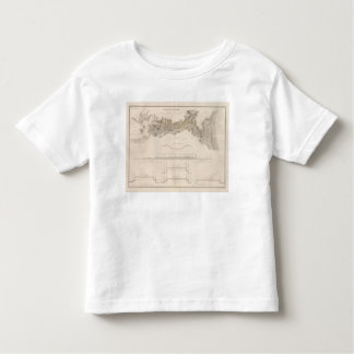 Cape Cod Canal Toddler T-shirt