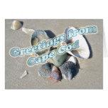 Cape Cod Massachusetts - Shell y resaca Tarjetas