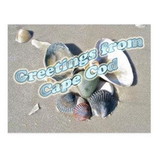 Cape Cod Massachusetts - Shell y resaca Tarjetas Postales
