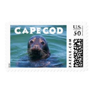 Cape Cod Massachusetts Swimming Seal United States Postage
